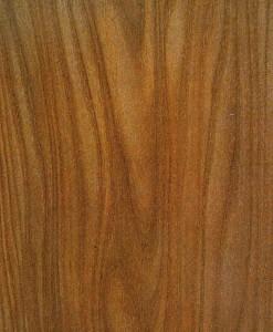 Ulmus hout
