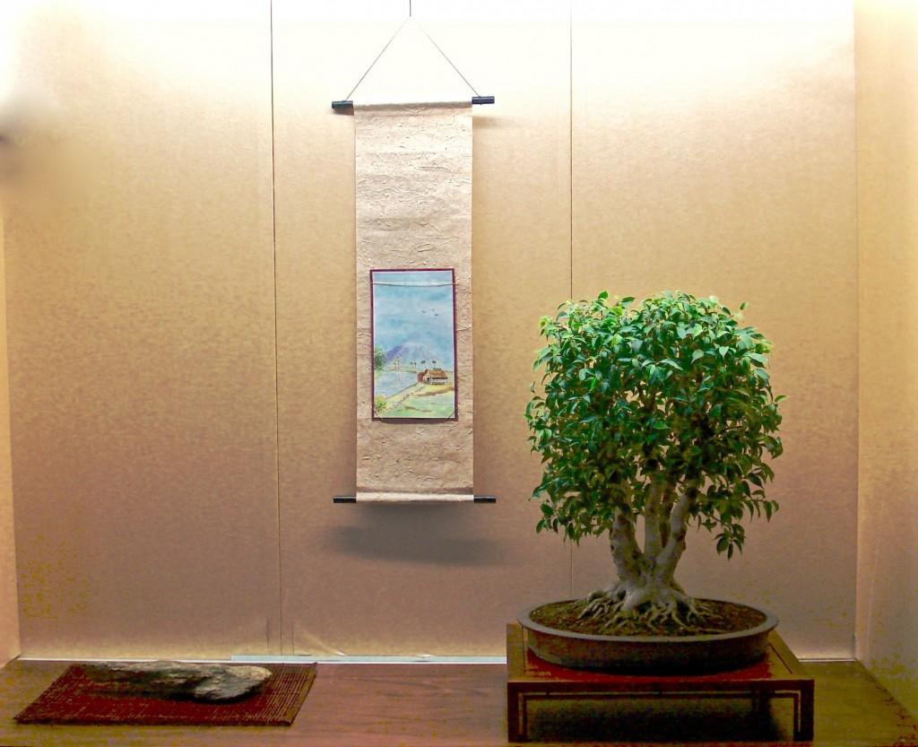 Ficus Dirk Eijzenga
